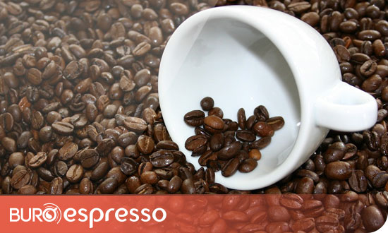Café en grain : blend ou pure origine ?